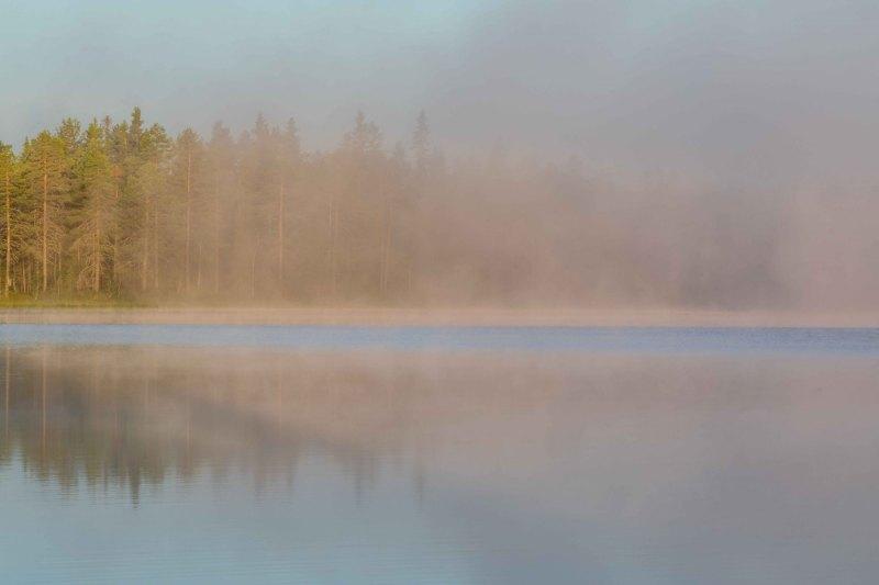 Nebelpolarnacht II