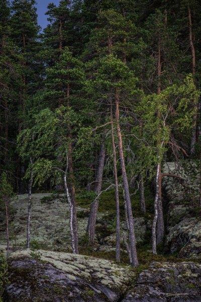 Savonlinna VI