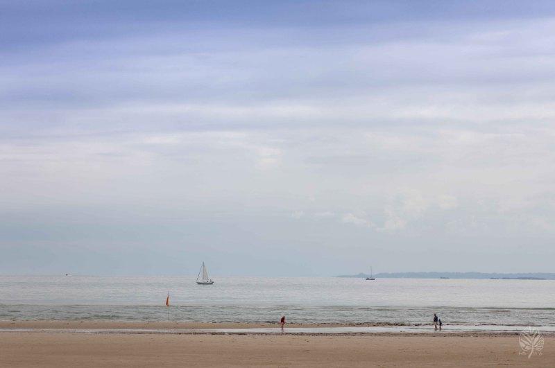 Normandie-2021-klein-301