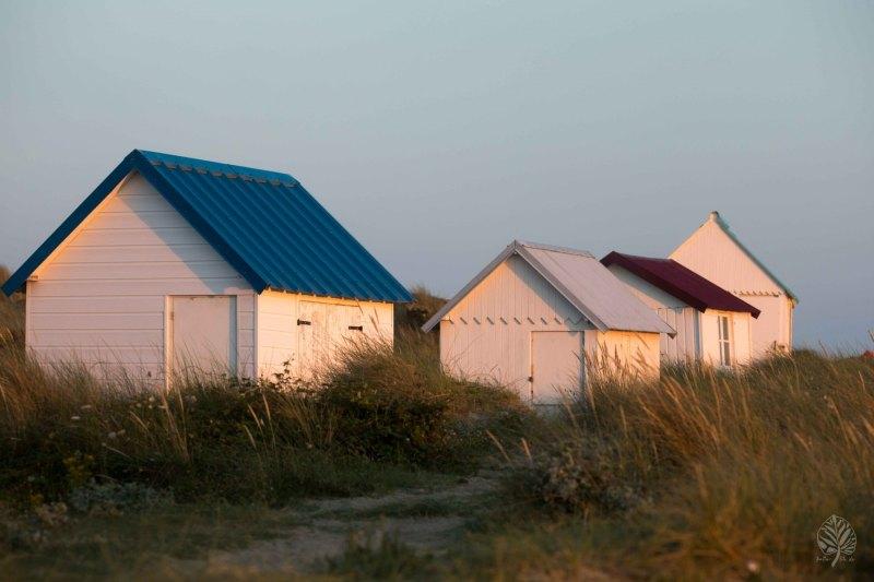 Normandie-2021-klein-578