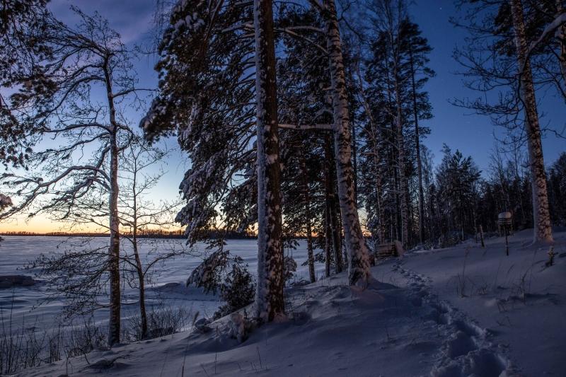 Hyvää Joulua Part 02.01. web-1