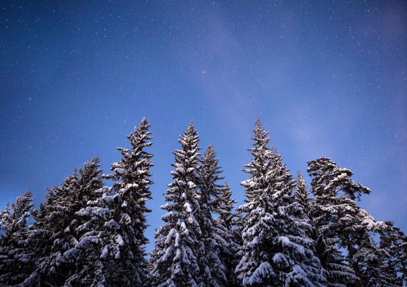 Hyvää Joulua Part 02.01. web-2