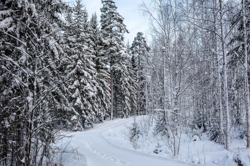 Hyvää Joulua Part 02.01. web-20
