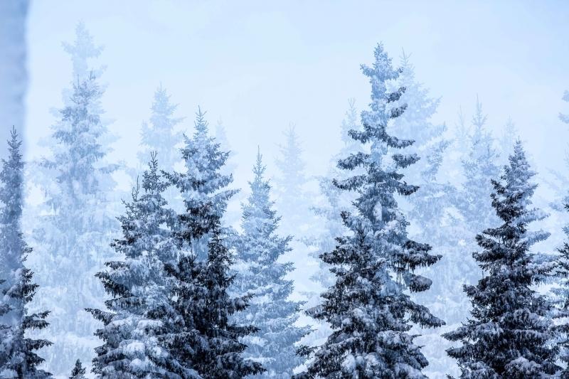 Hyvää Joulua Part 02.01. web-24