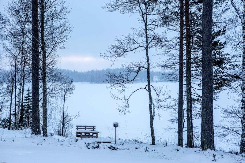 Hyvää Joulua Part 30.12 -7